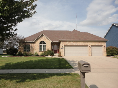 Channahon Single Family Home For Sale: 27308 Deer Hollow Lane