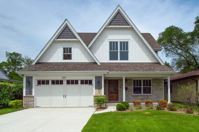 Downers Grove Single Family Home For Sale: 222 Grant Street