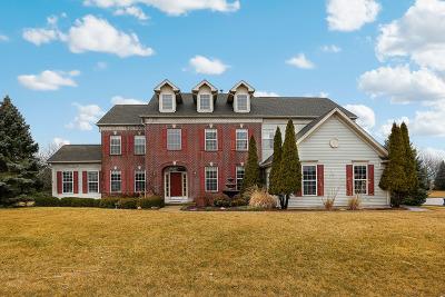 Bartlett Single Family Home For Sale: 1592 Hunting Hound Lane
