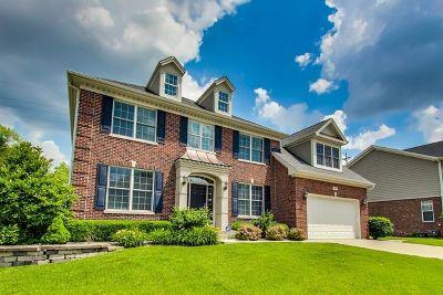 Palatine Single Family Home For Sale: 765 Ravinia Circle