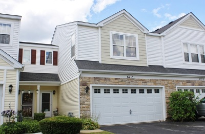 Carpentersville Condo/Townhouse For Sale: 6713 Slate Drive #6713