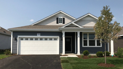 Single Family Home For Sale: 1020 Americana Avenue