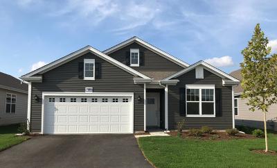 Single Family Home For Sale: 990 Americana Avenue