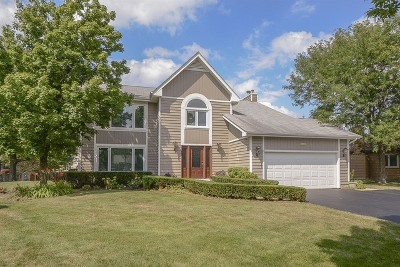 Buffalo Grove Single Family Home For Sale: 1406 Westchester Road