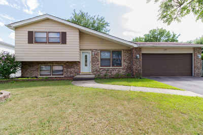 Matteson Single Family Home For Sale: 6159 Beechwood Road