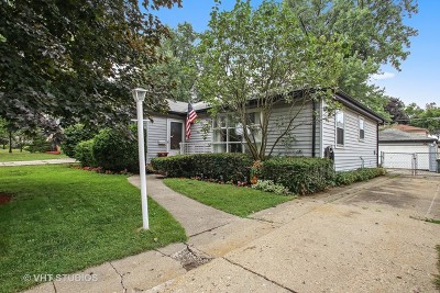 Mount Prospect Single Family Home For Sale: 504 North Fairview Avenue