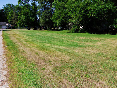 Braidwood Residential Lots & Land For Sale: 000 West Cermak Road