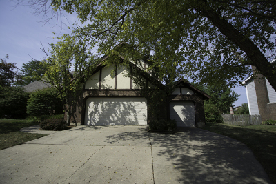 Hoffman Estates Single Family Home For Sale: 3500 Wilshire Drive