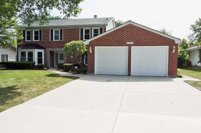 Schaumburg Single Family Home For Sale: 1331 Churchill Road