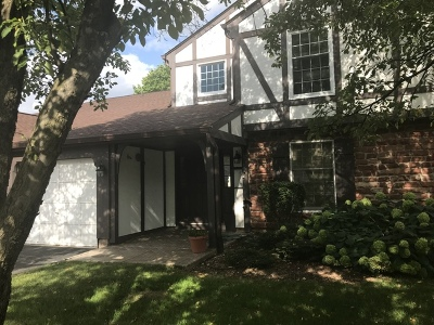 Old Sawmill Condo/Townhouse For Sale: 42 Plymouth Court #6-102B