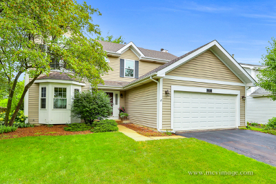 Aurora Single Family Home For Sale: 100 Forestview Lane