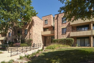 Schaumburg Condo/Townhouse For Sale: 1931 Prairie Square #314