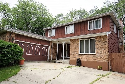 Lombard Single Family Home For Sale: 734 South Norbury Avenue