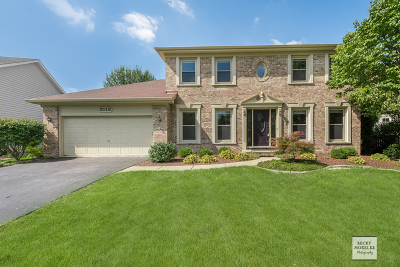 Naperville Single Family Home Price Change: 3119 Darwin Street