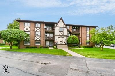 Palos Hills IL Condo/Townhouse For Sale: $119,000