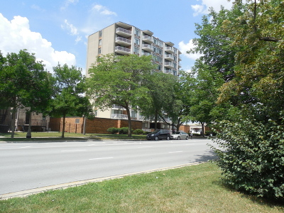 Bronzeville Condo/Townhouse For Sale: 3100 South King Drive #1004