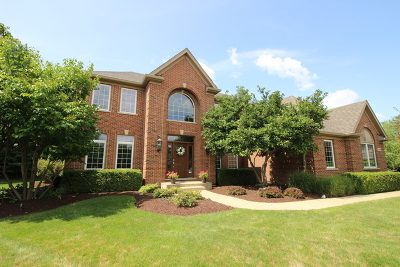 Lake In The Hills Single Family Home For Sale: 1003 Marble Court