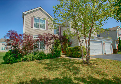 Woodstock Single Family Home For Sale: 225 Springwood Drive