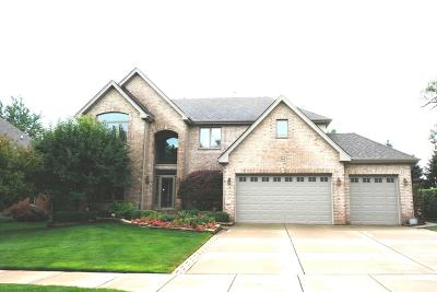 Woodridge Single Family Home For Sale: 945 Internationale Parkway