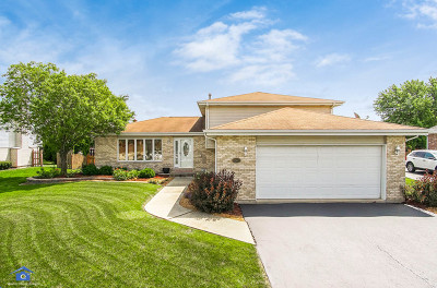 New Lenox Single Family Home For Sale: 762 Lisson Grv