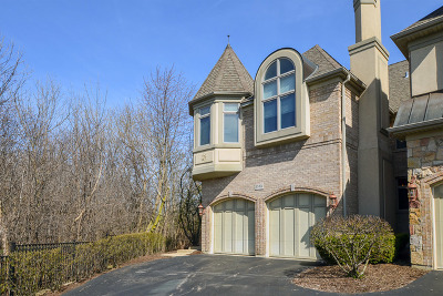 Palatine Condo/Townhouse For Sale: 1538 Rue James Place