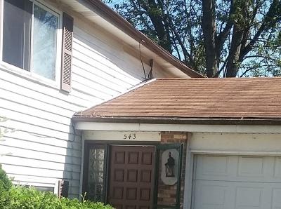 Bolingbrook Single Family Home For Sale: 543 Cottonwood Circle