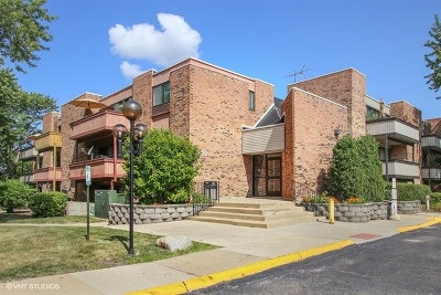 Schaumburg Condo/Townhouse For Sale: 1810 Hemlock Place #304