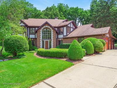 Glen Ellyn Single Family Home For Sale: 873 Baker Court