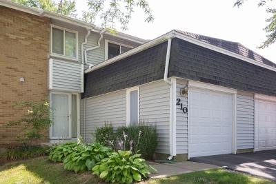 Bolingbrook Condo/Townhouse For Sale: 210 Diane Lane