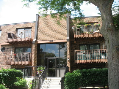 Schaumburg Condo/Townhouse For Sale: 612 South Waterford Road #3D