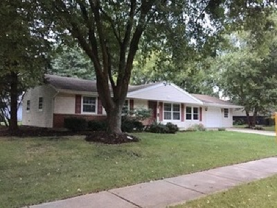 Schaumburg Single Family Home For Sale: 722 South Braintree Drive