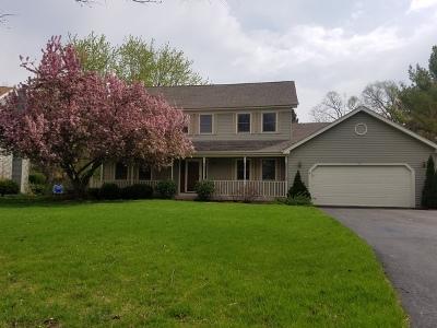 Geneva Single Family Home For Sale: 395 Southampton Drive