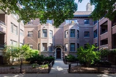 Condo/Townhouse For Sale: 916 West Schubert Avenue #3