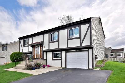 Bartlett Single Family Home For Sale: 991 Stuart Drive