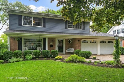 Hinsdale Single Family Home For Sale: 917 South Bruner Street