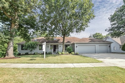 Lake Zurich Single Family Home For Sale: 218 Jamie Lane