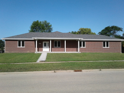 New Lenox Single Family Home For Sale: 919 Wisconsin Road