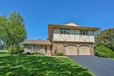 Schaumburg Single Family Home Contingent: 244 Monson Court