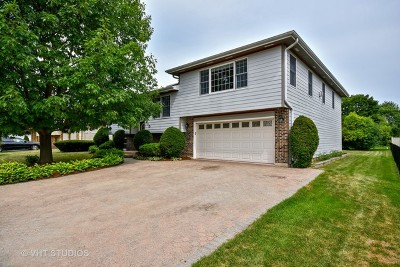 South Elgin Single Family Home For Sale: 910 Rainbow Terrace