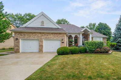 Woodridge Single Family Home For Sale: 8241 Eaton Drive