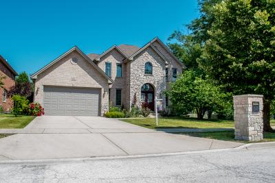 Mount Prospect Single Family Home For Sale: 2012 Celtic Glen Drive