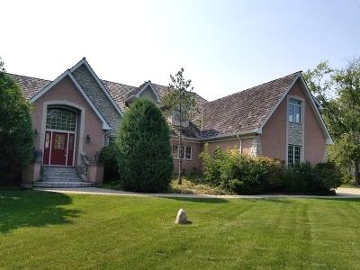 Palos Park Single Family Home For Sale: 12920 South 94th Avenue