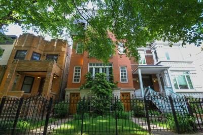 Condo/Townhouse For Sale: 816 West Oakdale Avenue #3