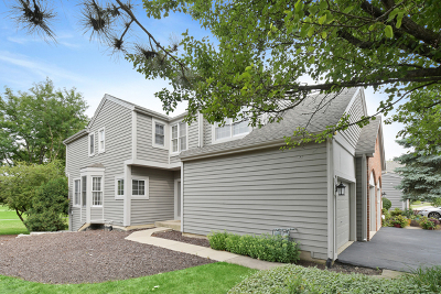 Naperville Condo/Townhouse For Sale: 1417 Aberdeen Court