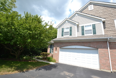 Batavia Condo/Townhouse For Sale: 217 Trentt Drive #217