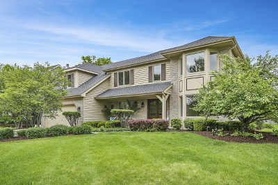 Naperville Single Family Home For Sale: 3712 Celeste Lane