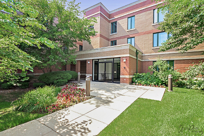 Highland Park Condo/Townhouse For Sale: 891 Central Avenue #236