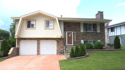 Schaumburg Single Family Home Price Change: 1170 Saylesville Lane