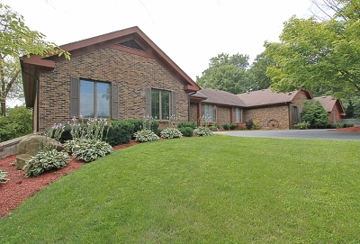 Mc Henry County Single Family Home For Sale: 820 Cherry Valley Road