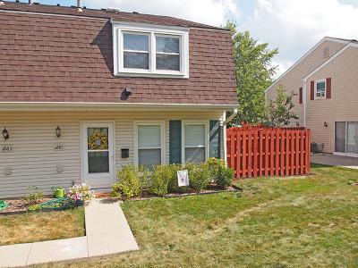 Hoffman Estates Condo/Townhouse For Sale: 1881 Jamestown Circle #3221